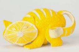 игрушки из фруктов и овощей: кот