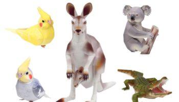 Паперкрафт животные Австралии